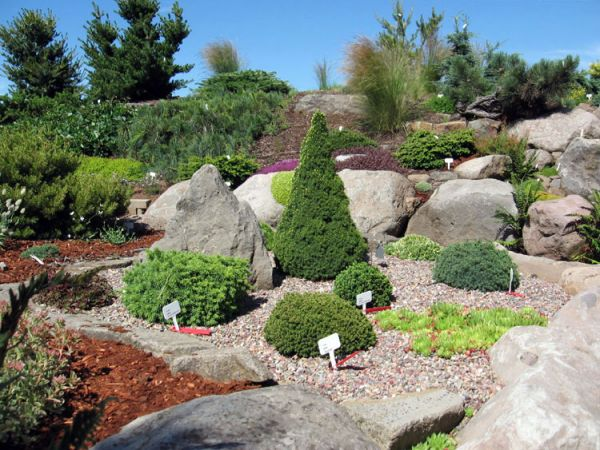 Alpine_hill_garden_06