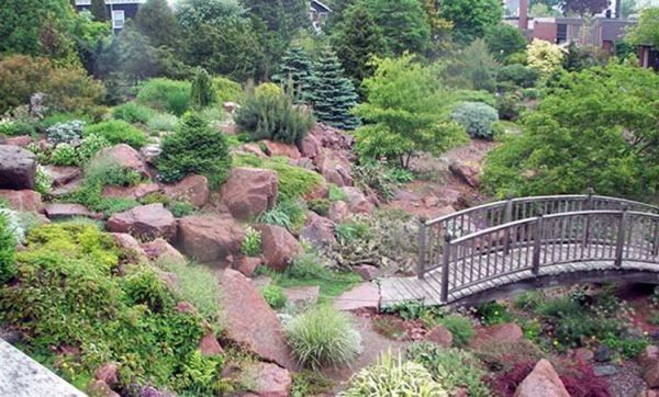 Alpine_hill_garden_10